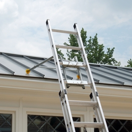 Roof Zone 48589 Bird Ladder