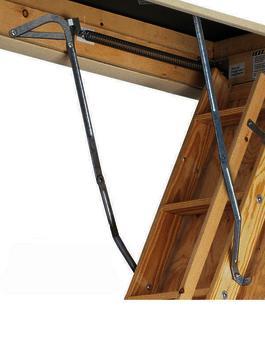 Werner 55 1 Bird Ladder